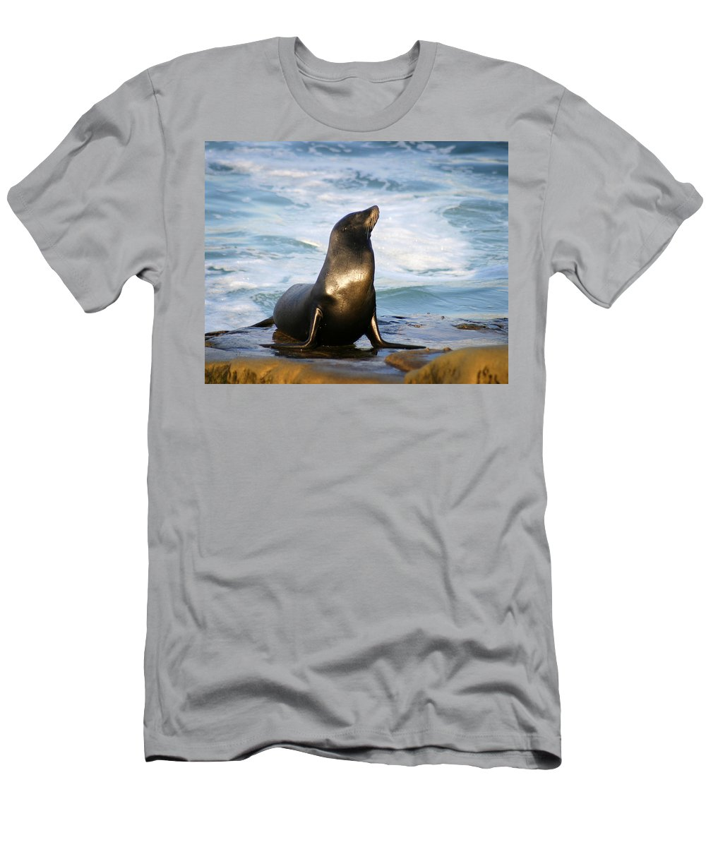 Sealion T-Shirt featuring the photograph Sealion by Anthony Jones