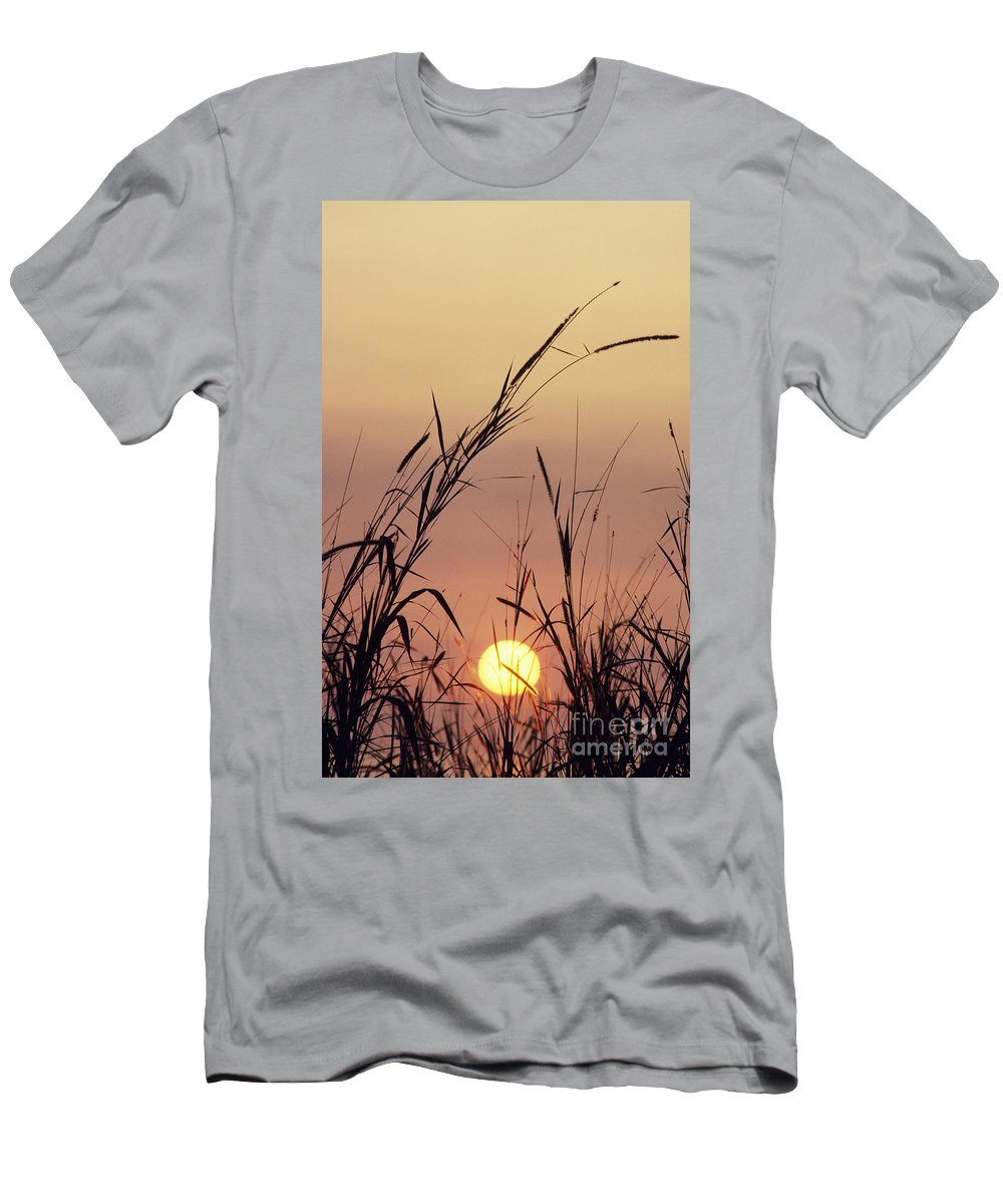 Beautiful Men's T-Shirt (Athletic Fit) featuring the photograph Silhouettes by Greg Vaughn - Printscapes