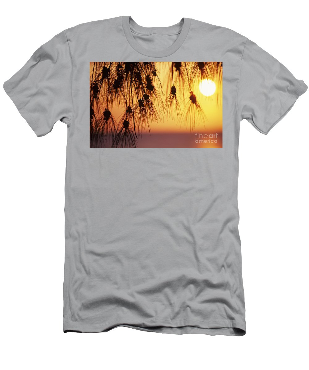 Beautiful Men's T-Shirt (Athletic Fit) featuring the photograph Silhouettes by Rita Ariyoshi - Printscapes