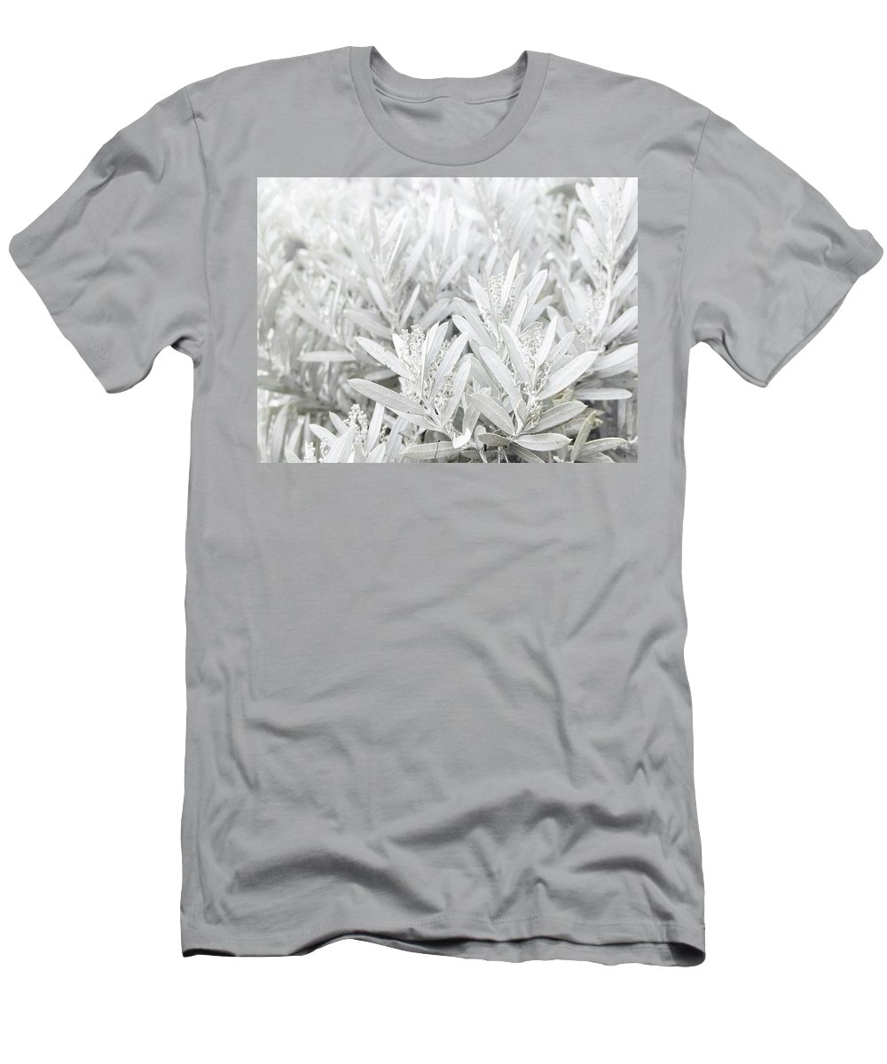 Silver Men's T-Shirt (Athletic Fit) featuring the photograph Silver Foliage by Jen Wray