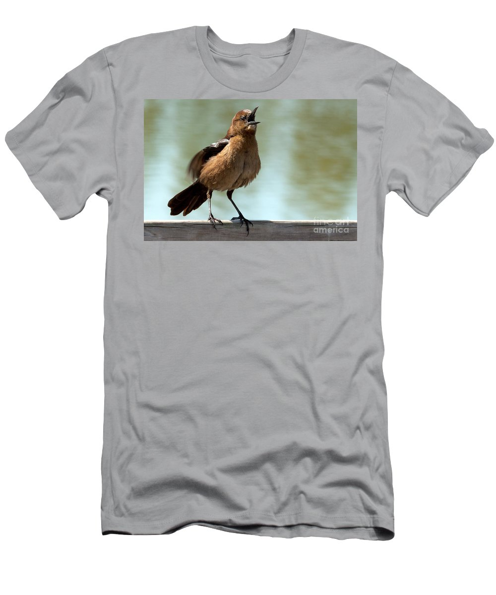 Boat-tailed Grackle Men's T-Shirt (Athletic Fit) featuring the photograph Sing Out Loud by Meg Rousher