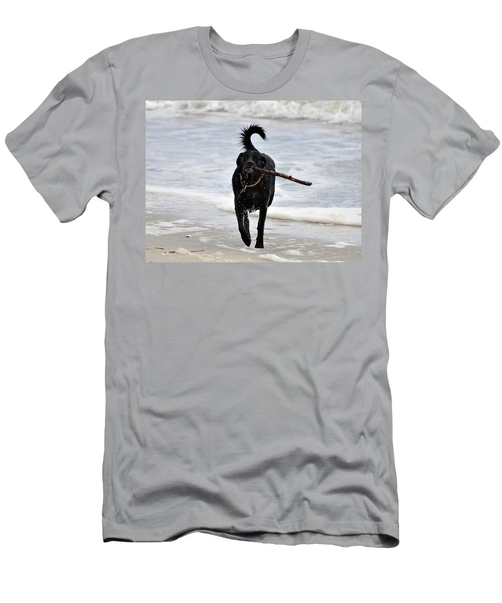Dog Men's T-Shirt (Athletic Fit) featuring the photograph Soggy Stick by Al Powell Photography USA