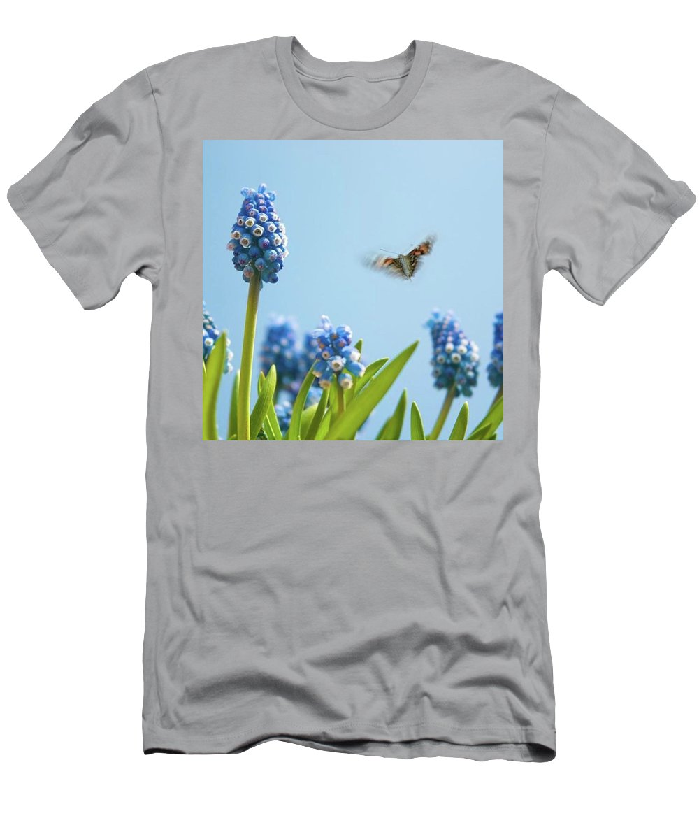 Insectsofinstagram T-Shirt featuring the photograph Something In The Air: Peacock by John Edwards
