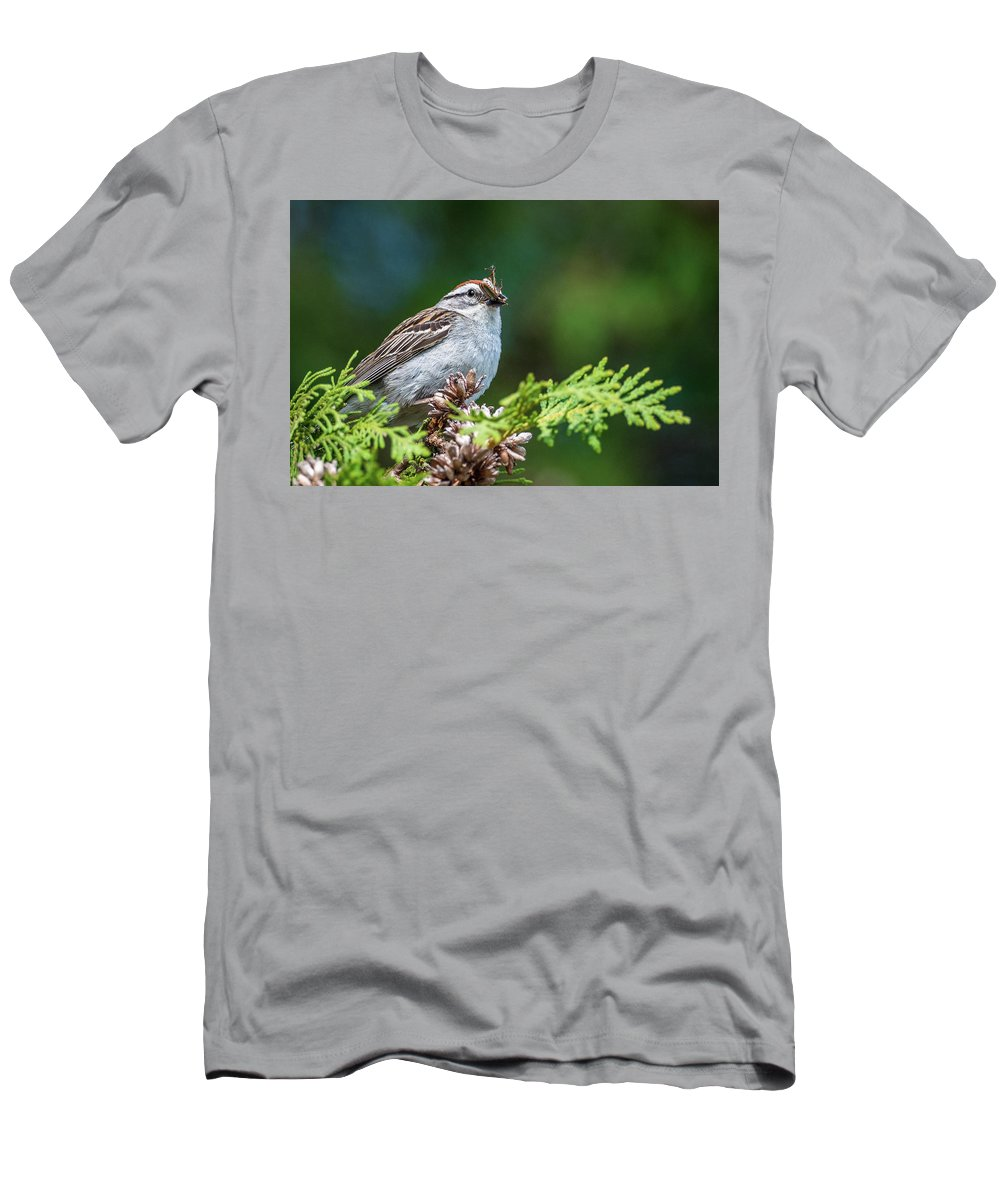 Sparrow With Lunch Men's T-Shirt (Athletic Fit) featuring the photograph Sparrow With Lunch by Paul Freidlund