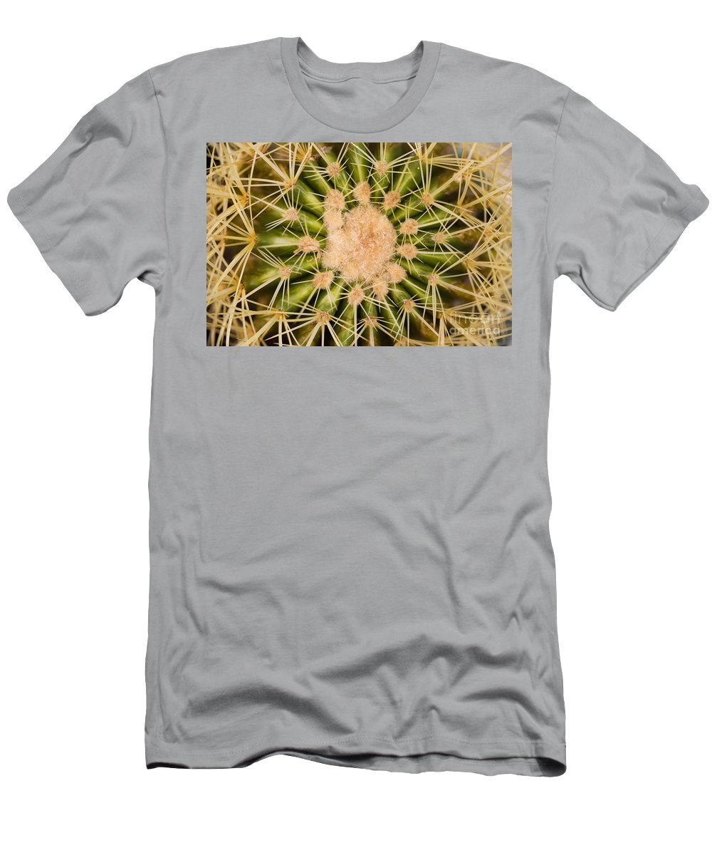 Afternoon Men's T-Shirt (Athletic Fit) featuring the photograph Spiny Cactus Needles by Tomas del Amo - Printscapes