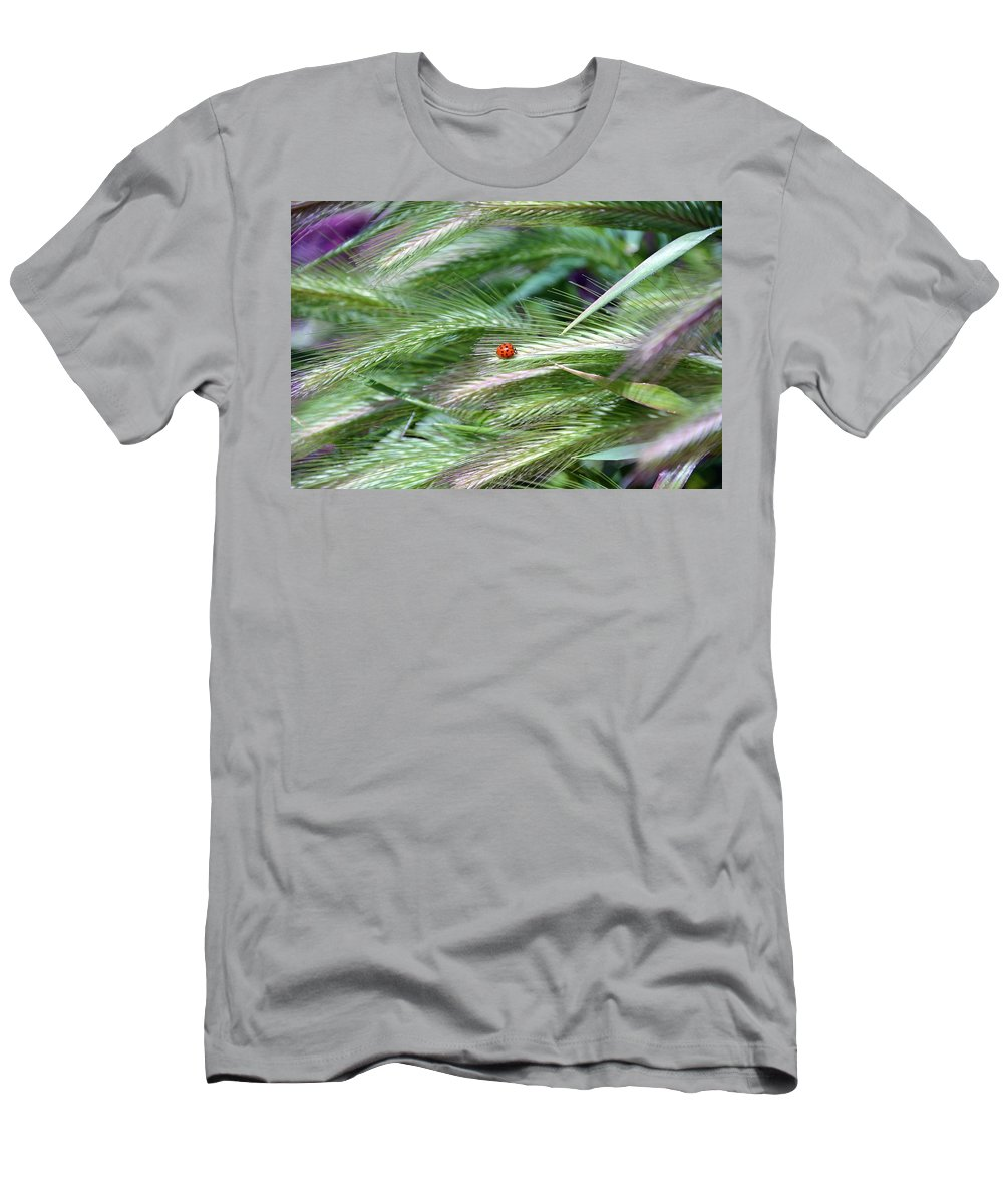 Ladybug Men's T-Shirt (Athletic Fit) featuring the photograph Spots by Michael Brown