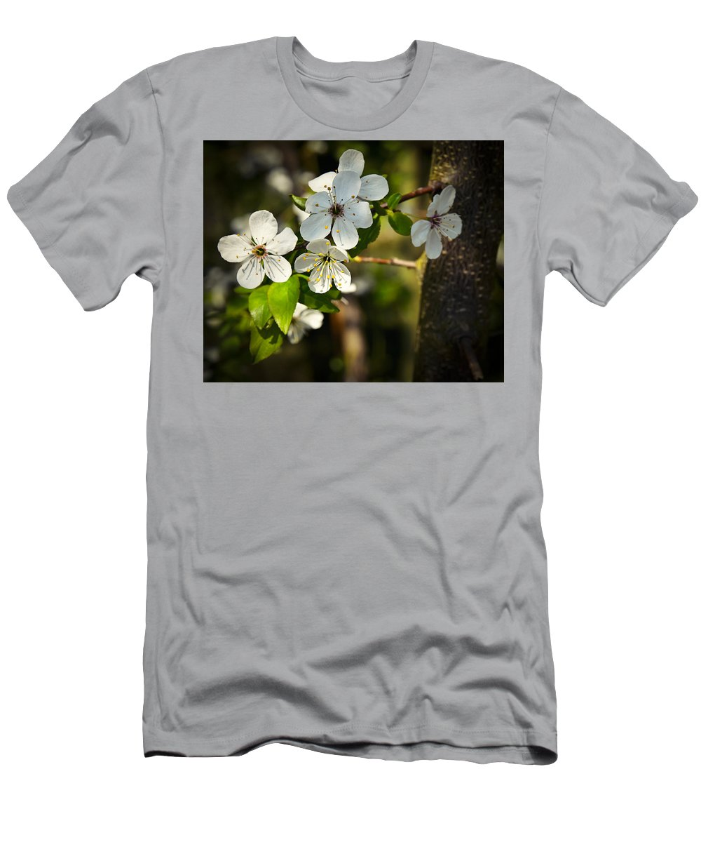 Tree Men's T-Shirt (Athletic Fit) featuring the photograph Spring Twig With White Florets by Jozef Jankola