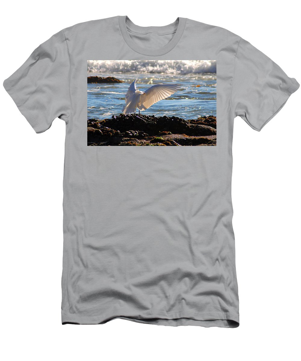 Clay Men's T-Shirt (Athletic Fit) featuring the photograph Strut by Clayton Bruster