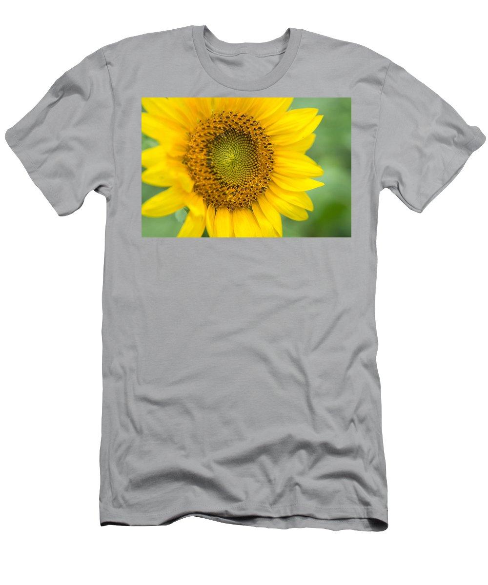 pre order dirt cheap outlet store sale Sunflower 3 Men's T-Shirt (Athletic Fit)