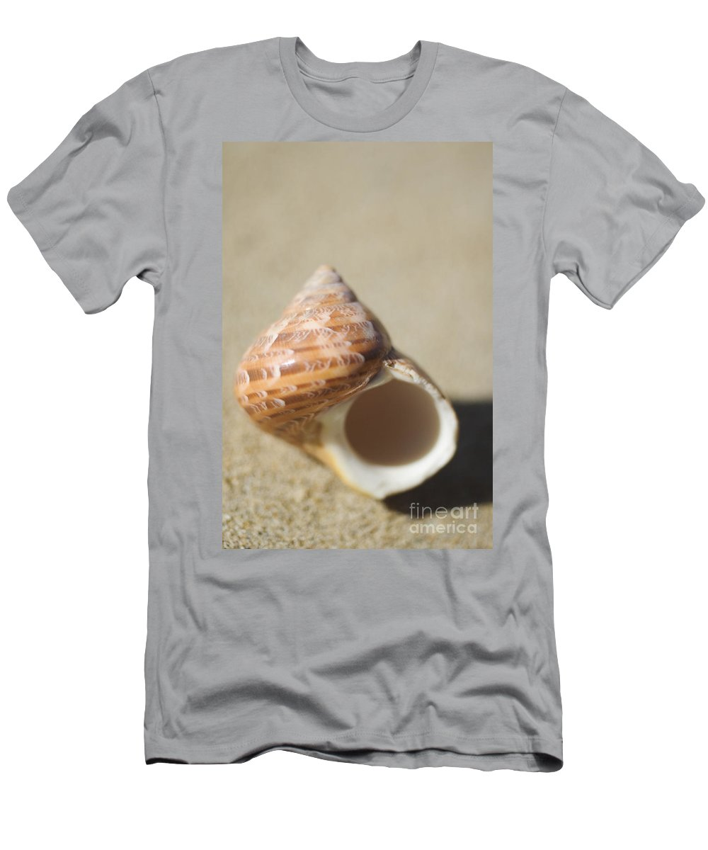 Background Men's T-Shirt (Athletic Fit) featuring the photograph Tapestry Turban Seashell by Mary Van de Ven - Printscapes
