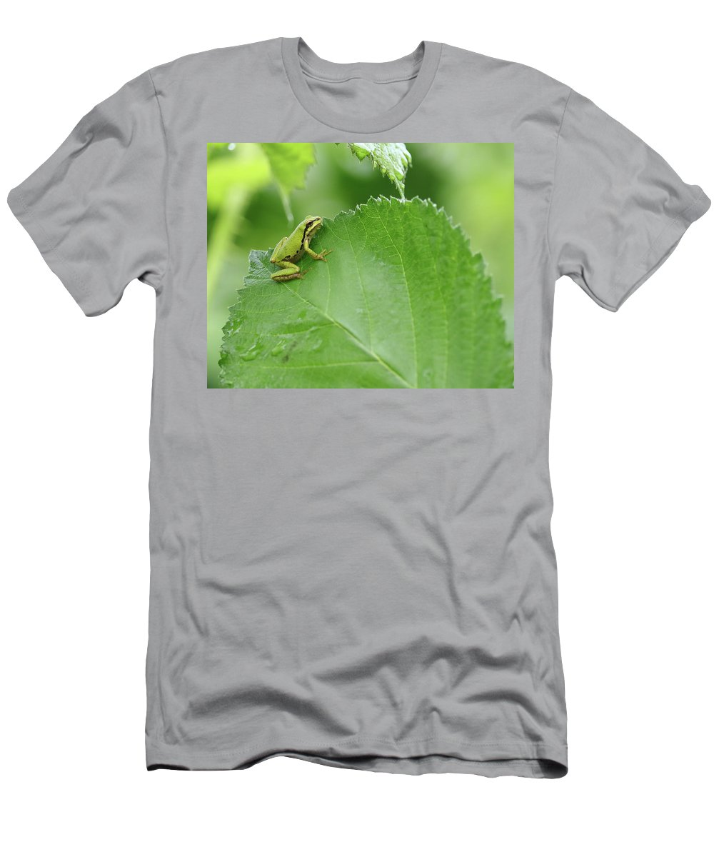 Pacific Chorus Frog Men's T-Shirt (Athletic Fit) featuring the photograph That Eternal Wheel by I'ina Van Lawick