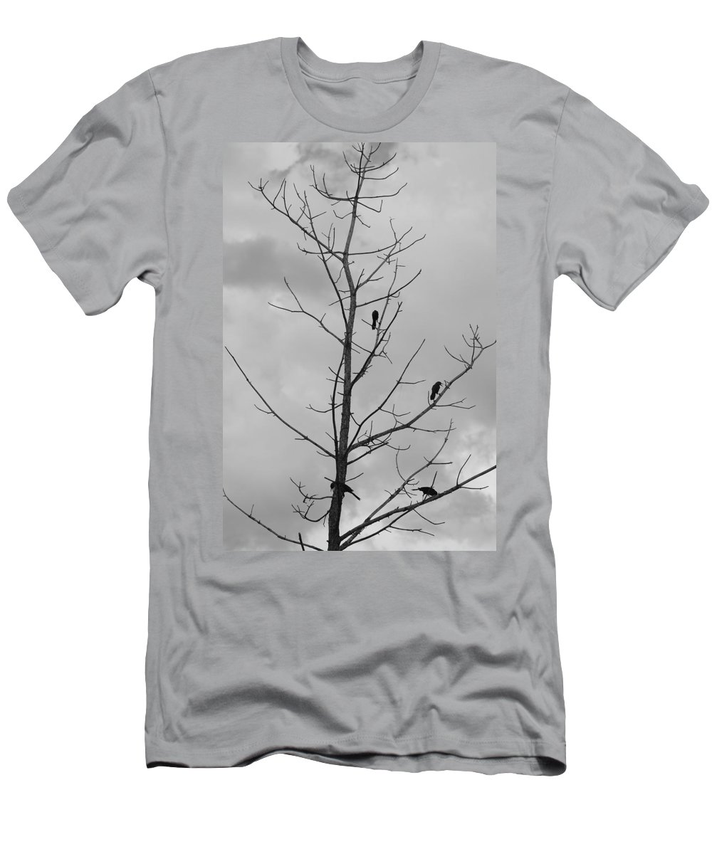 Tree Men's T-Shirt (Athletic Fit) featuring the photograph The Birds by Rob Hans