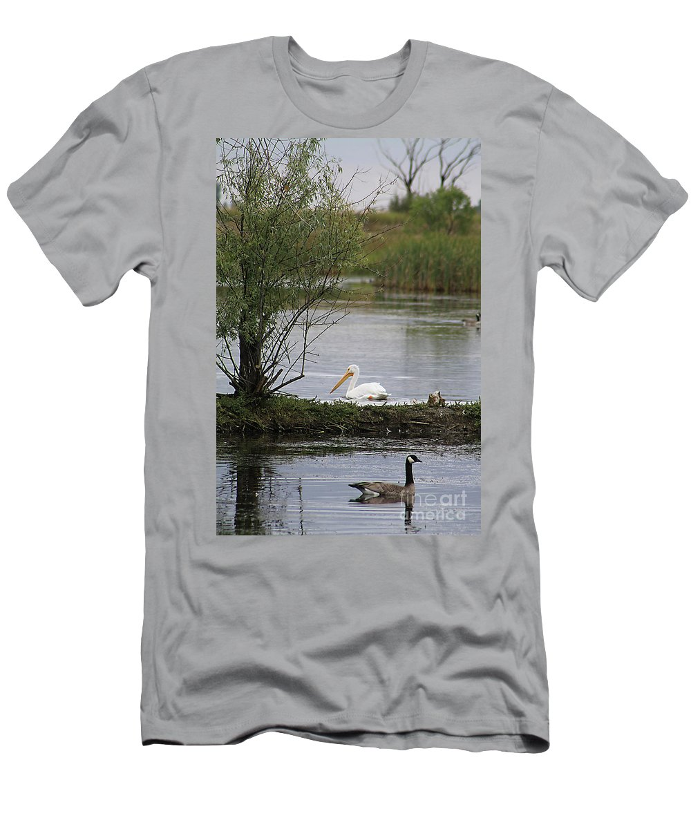 Goose Men's T-Shirt (Athletic Fit) featuring the photograph The Goose And The Pelican by Alyce Taylor
