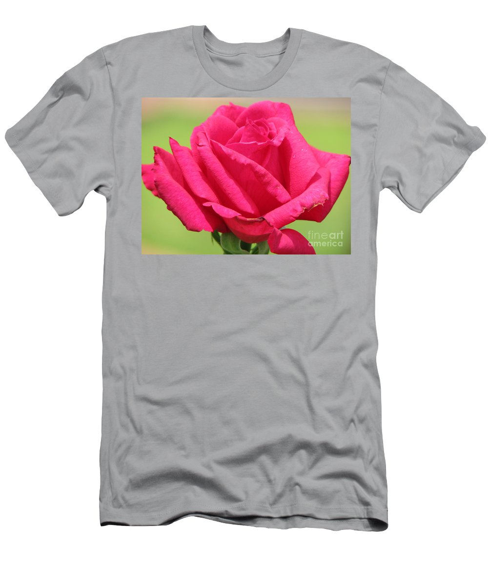 Roses Men's T-Shirt (Athletic Fit) featuring the photograph The Rose by Amanda Barcon
