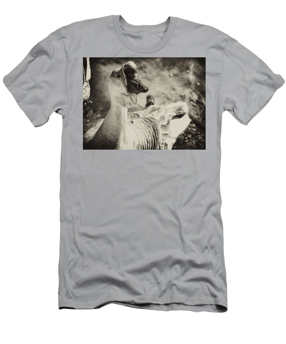 Philadelphia T-Shirt featuring the photograph The Ugly Duckling by Bill Cannon