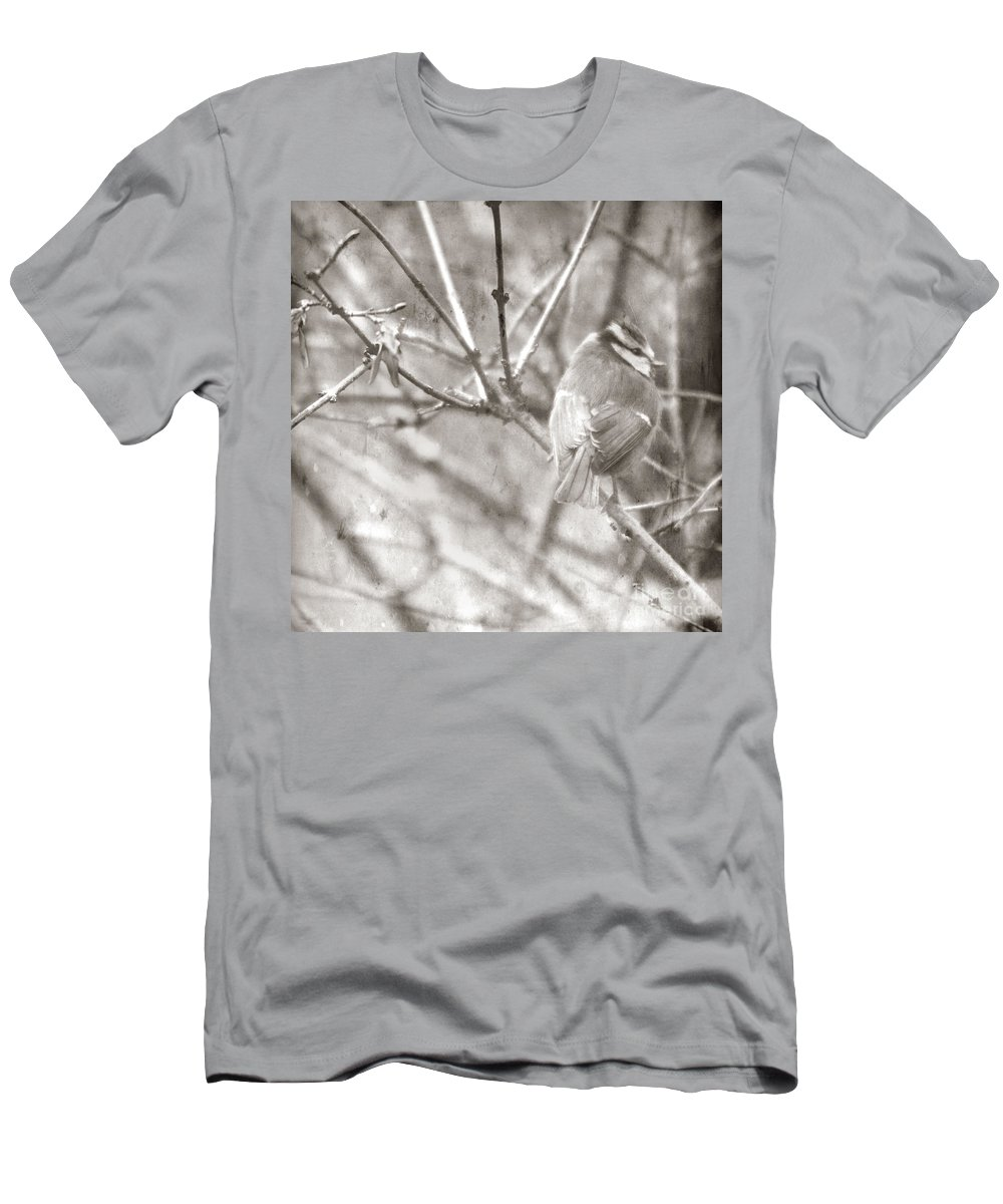 Blue Tit Men's T-Shirt (Athletic Fit) featuring the photograph The Winter Time by Angel Tarantella