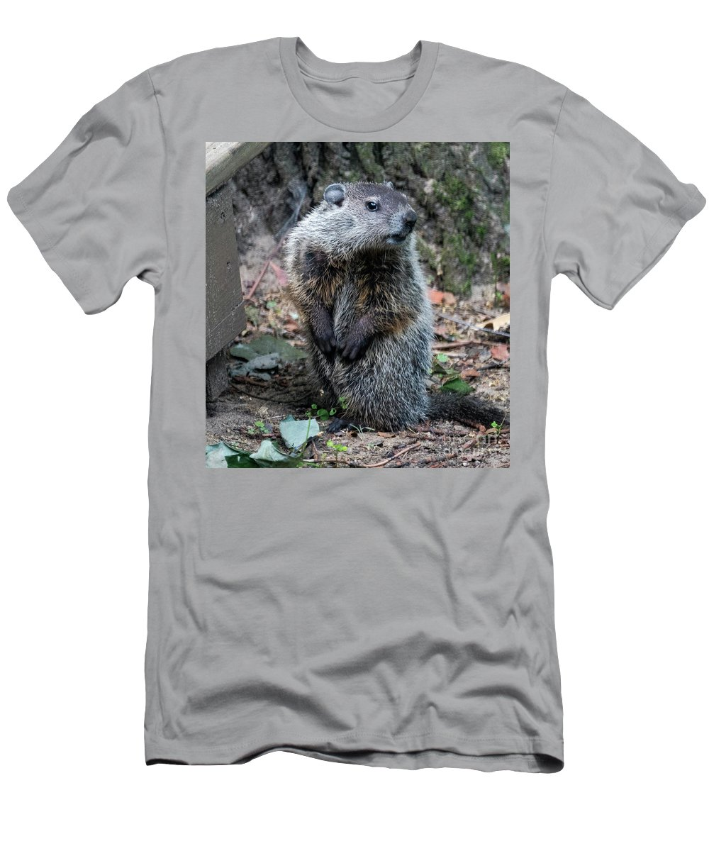 Groundhog Men's T-Shirt (Athletic Fit) featuring the photograph The Woodchuck Has To Pee by Kenneth Lempert