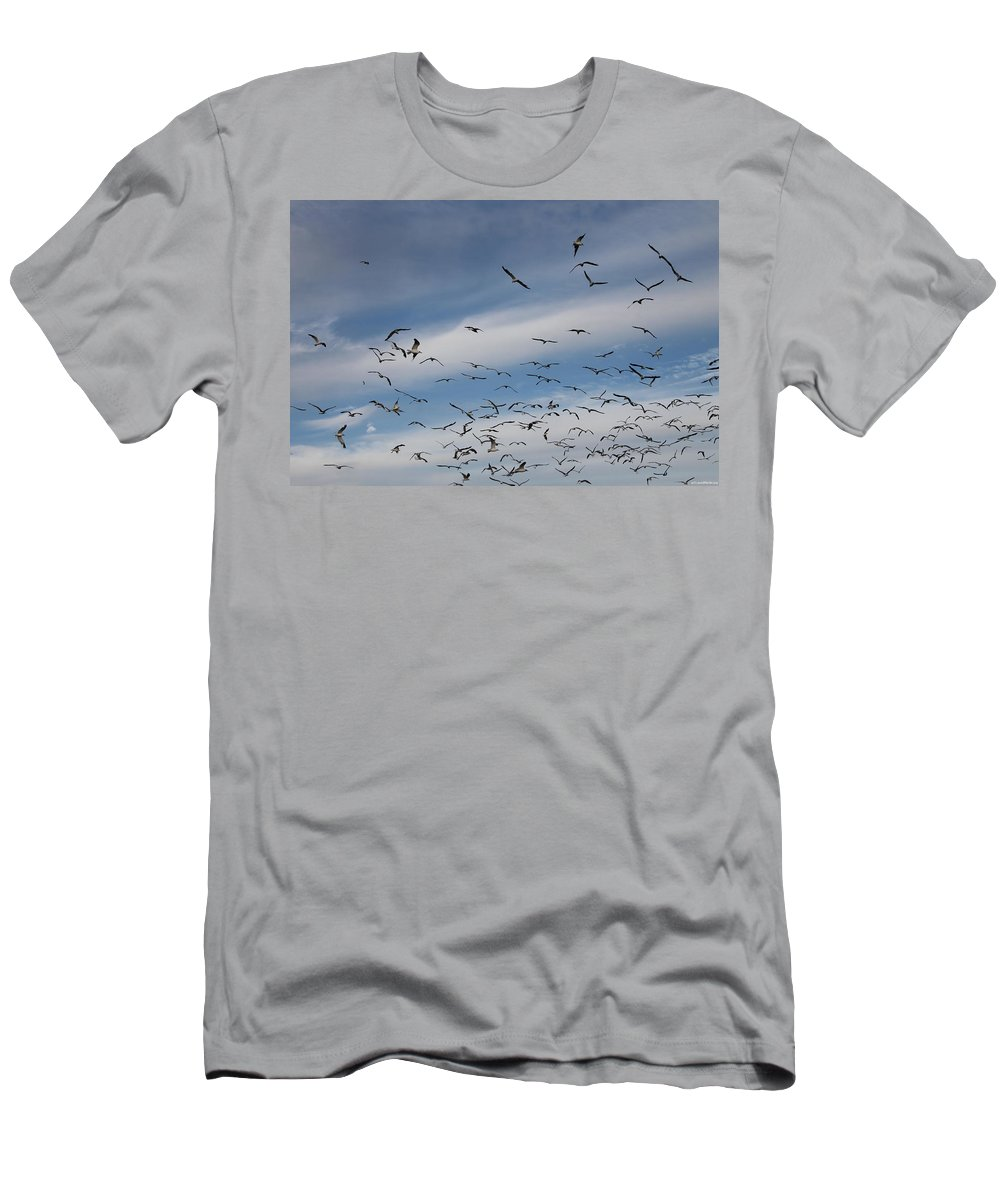 Seagull Men's T-Shirt (Athletic Fit) featuring the photograph They're Massing by Laura Martin
