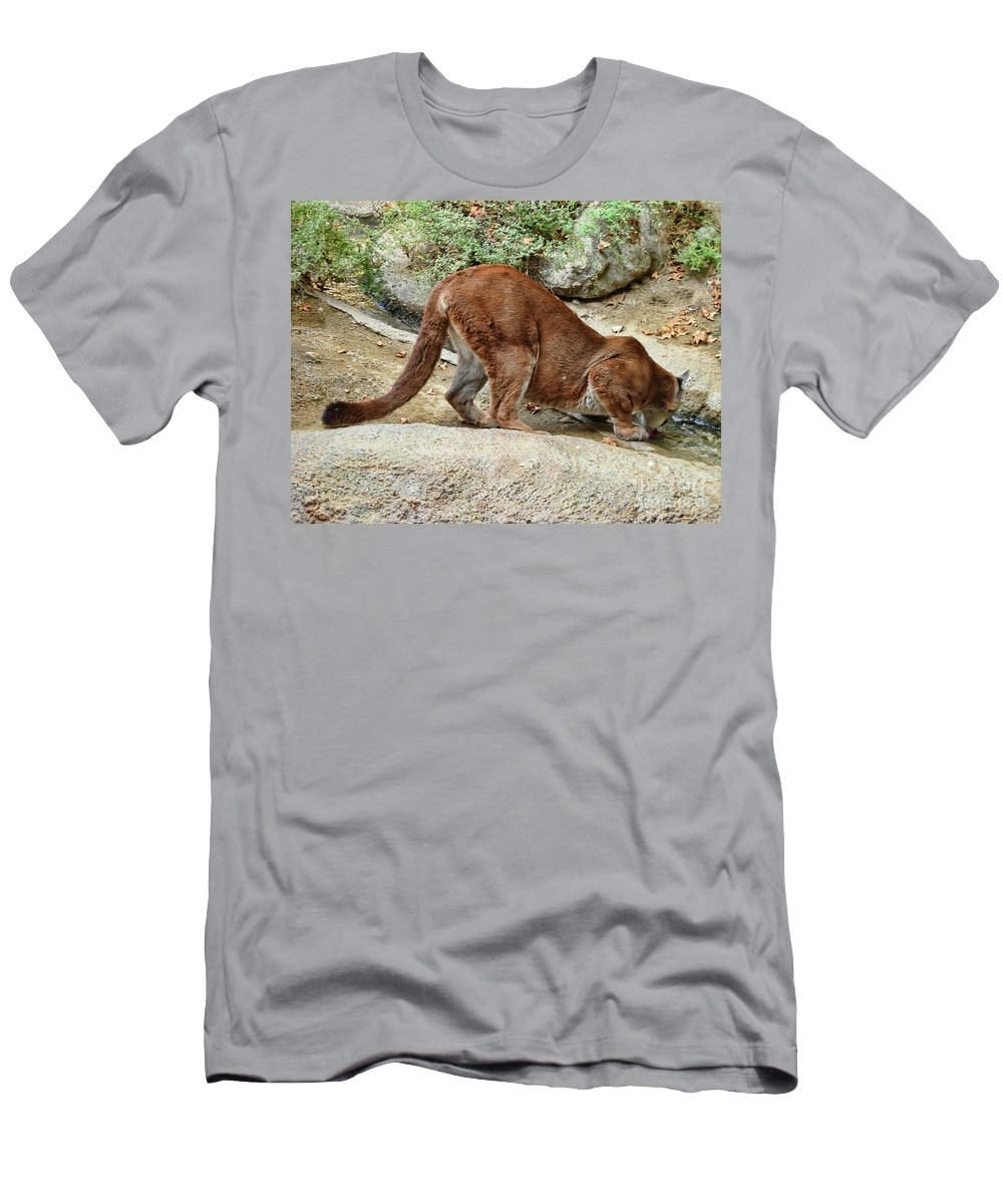 Thirsty Puma Men's T-Shirt (Athletic Fit) featuring the photograph Thirsty Puma by Mariola Bitner