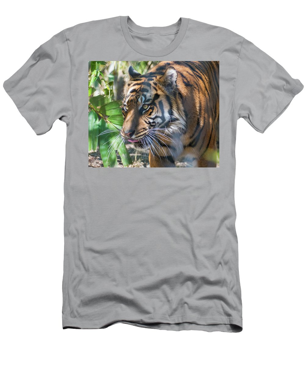 Tiger Men's T-Shirt (Athletic Fit) featuring the photograph Tiger by Andrew Lelea