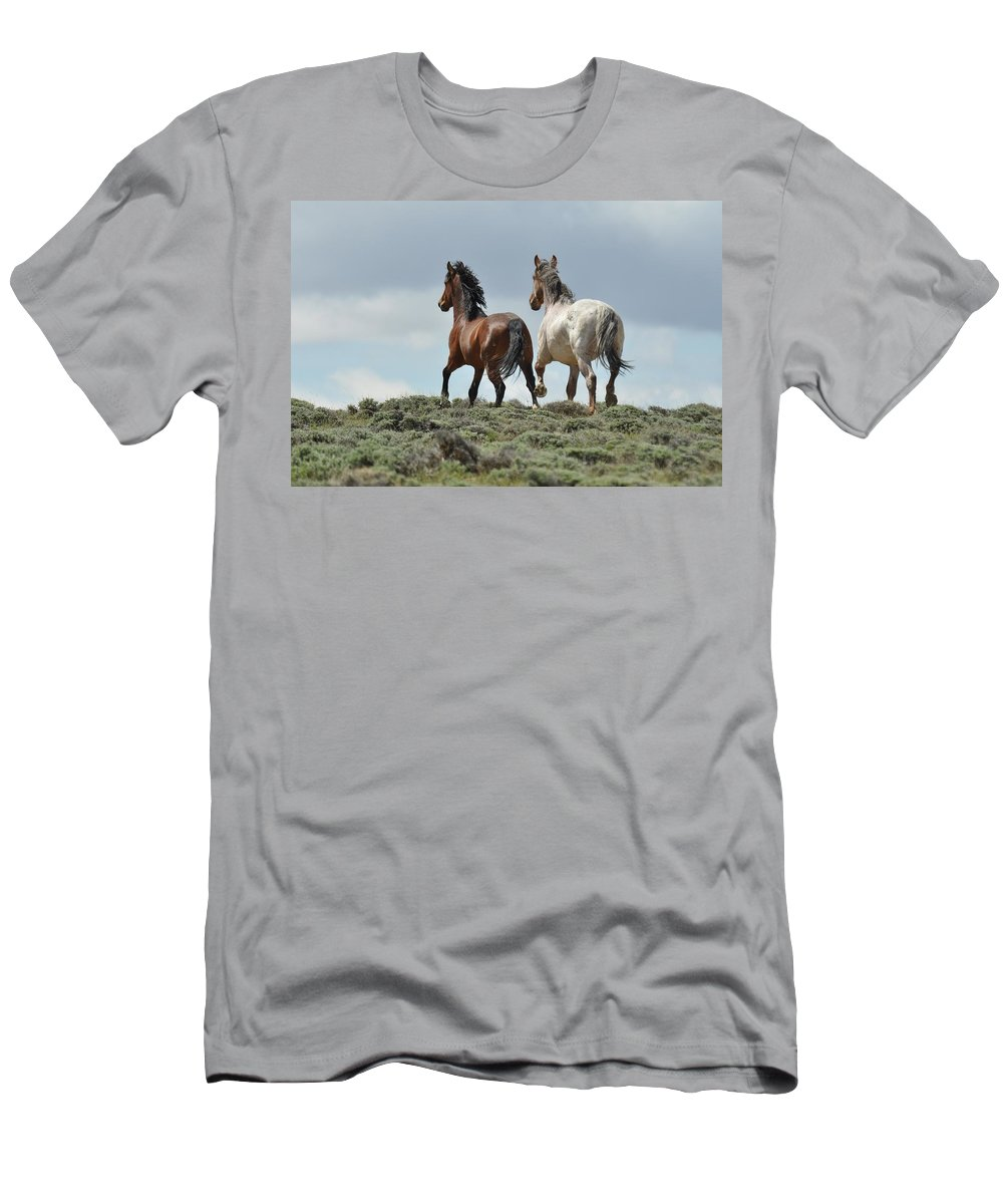 Wild Horses T-Shirt featuring the photograph Too Beautiful by Frank Madia