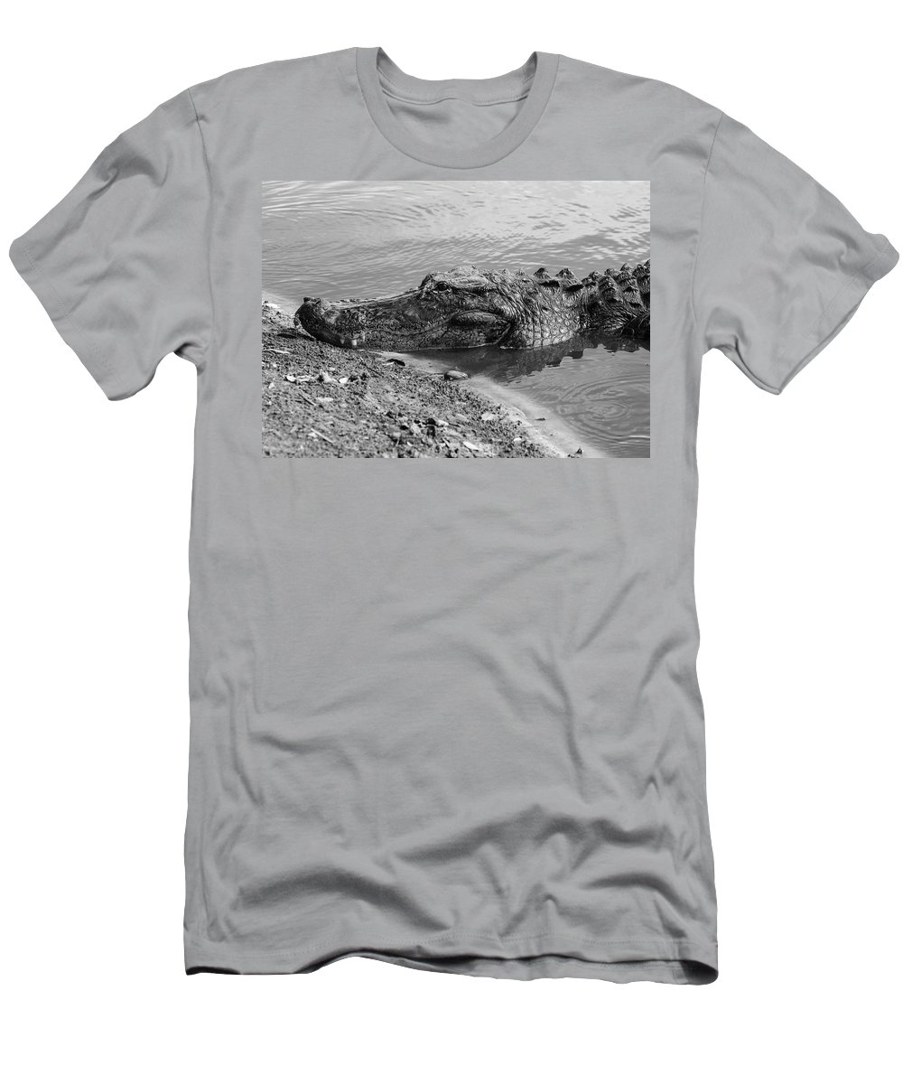 Photo For Sale Men's T-Shirt (Athletic Fit) featuring the photograph Toothy Grin by Robert Wilder Jr