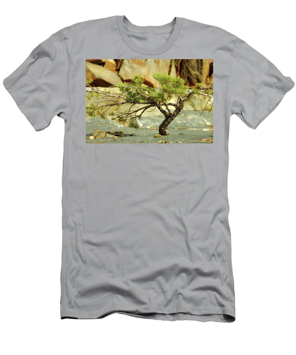 Tree Men's T-Shirt (Athletic Fit) featuring the photograph Tough Upbringing by Donna Blackhall