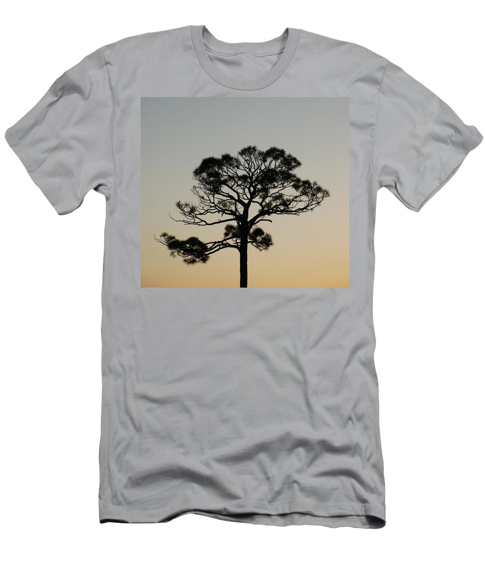 Tree T-Shirt featuring the photograph Trees In Sunset by Rob Hans