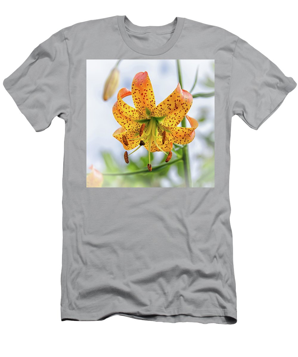 Blue Ridge Mountains Men's T-Shirt (Athletic Fit) featuring the photograph Turk's Cap Lily by Kristina Plaas