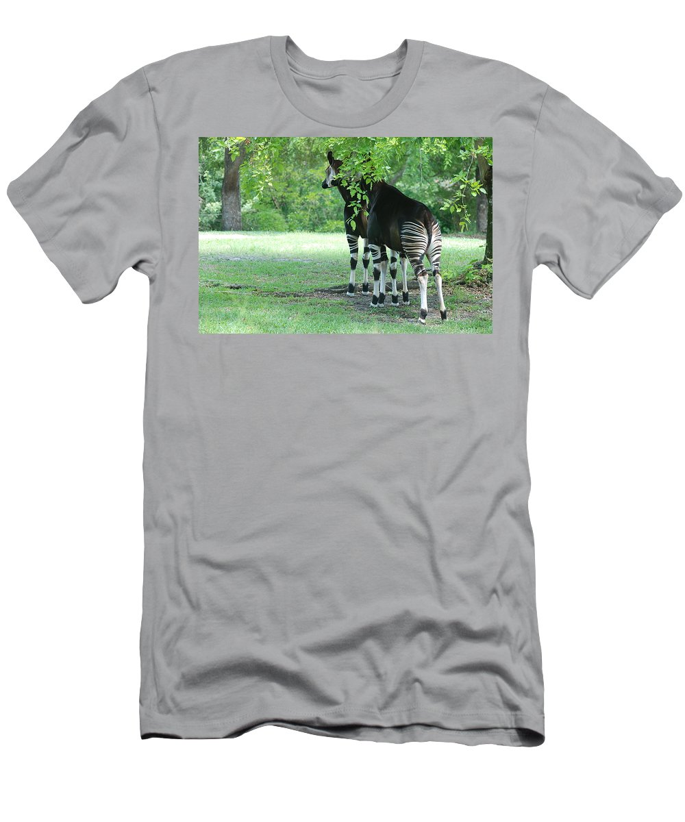 Animal Men's T-Shirt (Athletic Fit) featuring the photograph Two Stripes by Rob Hans