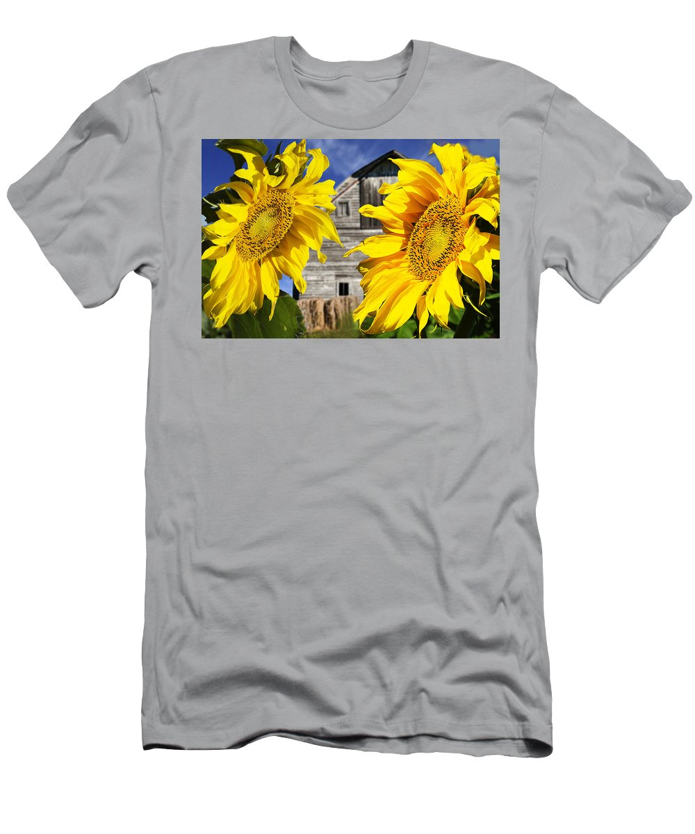 Sunflower Men's T-Shirt (Athletic Fit) featuring the photograph Two Sunflowers by Donald Erickson