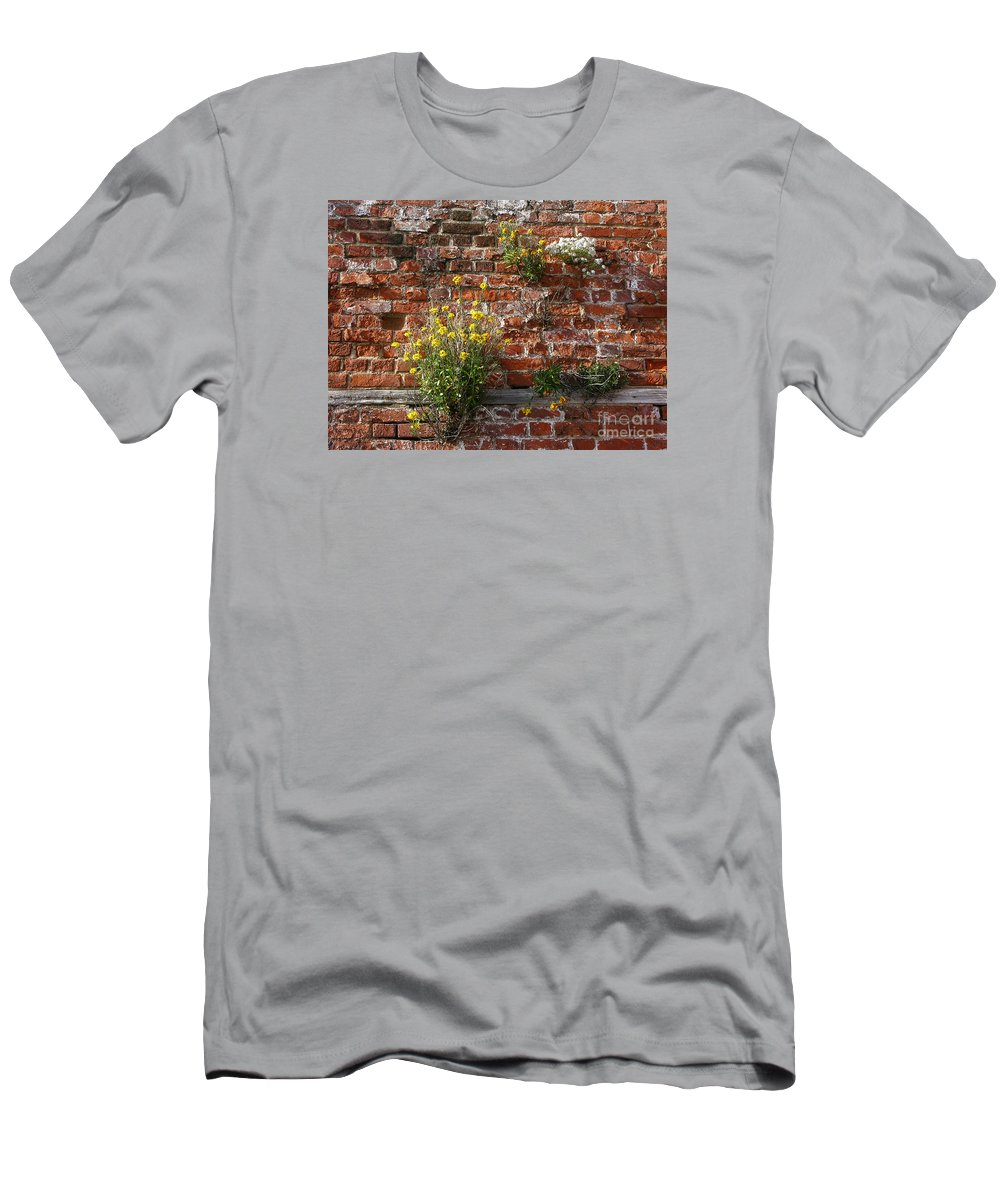 Wallflowers Men's T-Shirt (Athletic Fit) featuring the photograph Wall Flowers by Ann Horn