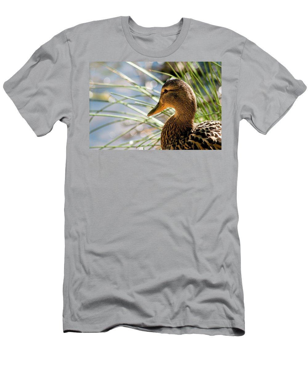 Duck Men's T-Shirt (Athletic Fit) featuring the photograph Watchful Eye by Monte Arnold
