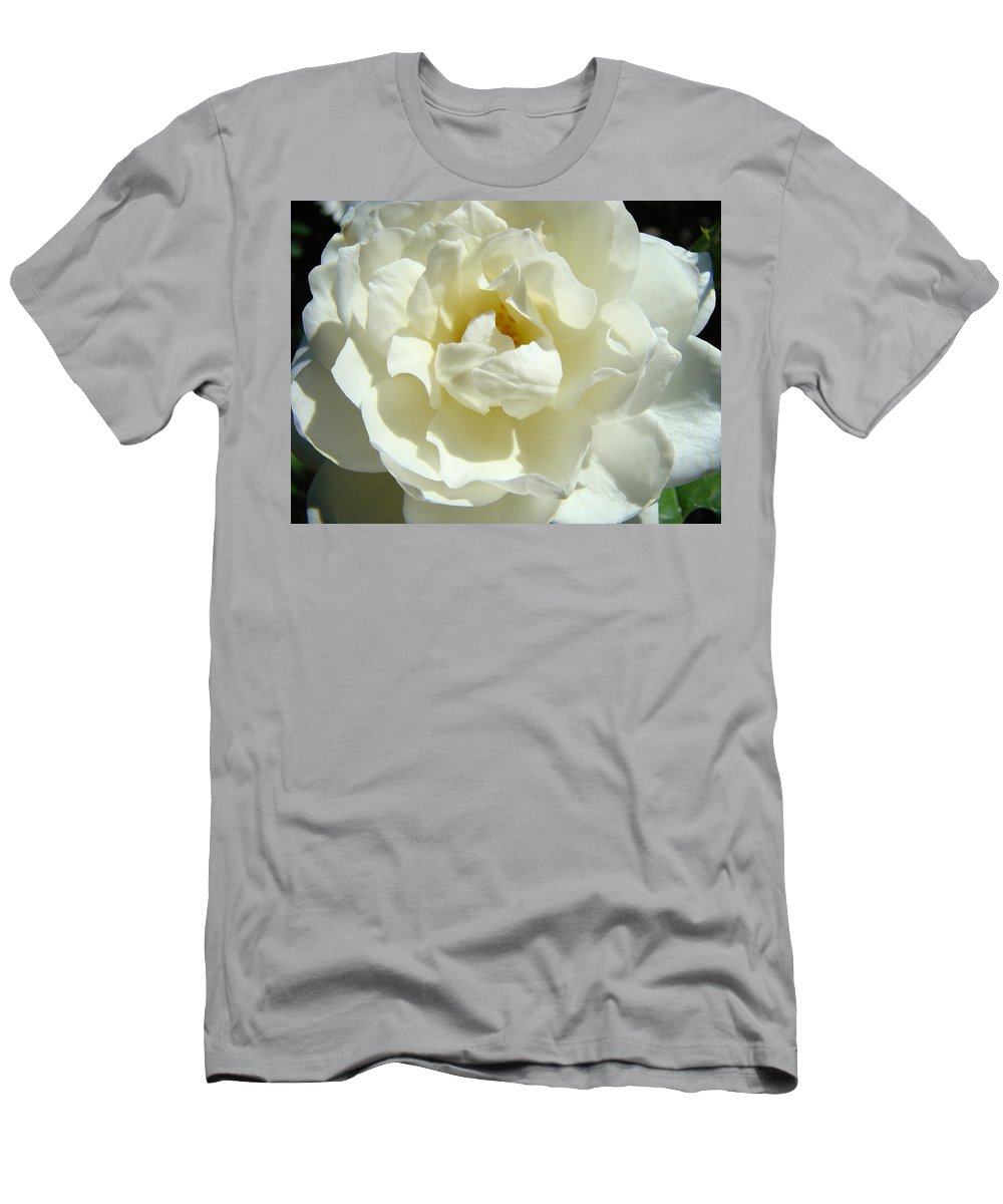 Rose Men's T-Shirt (Athletic Fit) featuring the photograph White Rose Art Prints Summer Sunlit Roses Baslee Troutman by Baslee Troutman