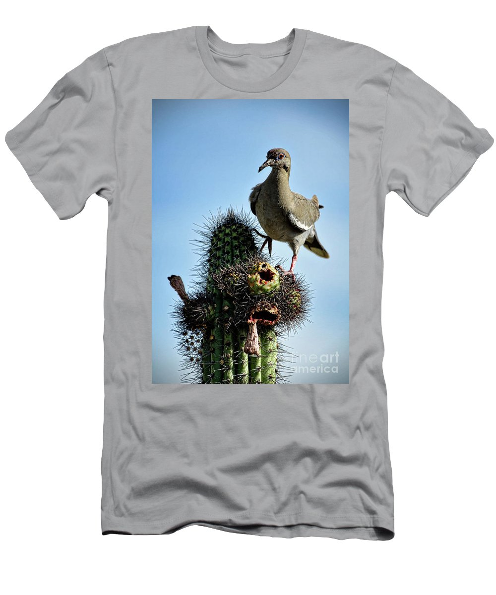 White Winged Dove Men's T-Shirt (Athletic Fit) featuring the photograph White Winged Dove by Saija Lehtonen