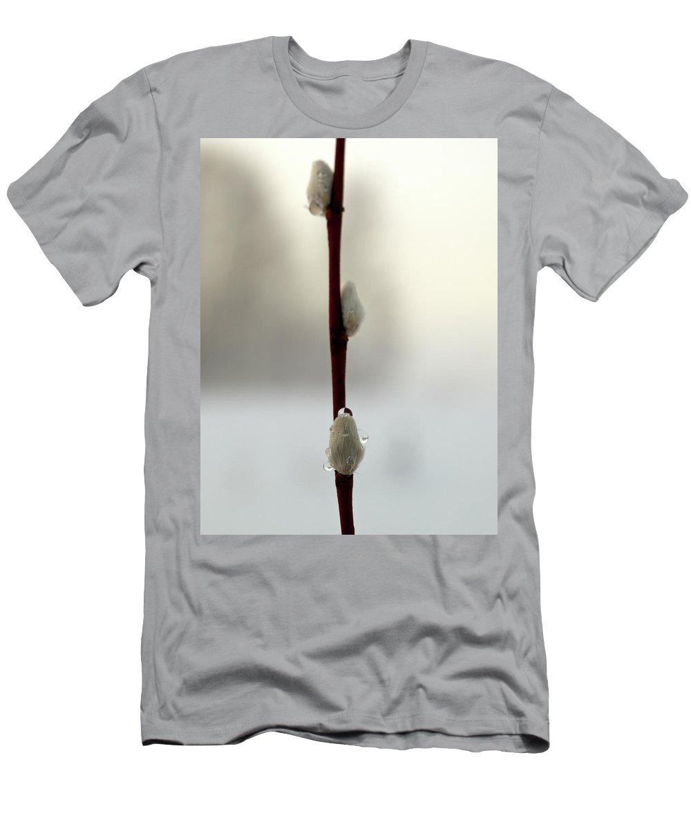 Lehtokukka Men's T-Shirt (Athletic Fit) featuring the photograph Willow Catkins by Jouko Lehto
