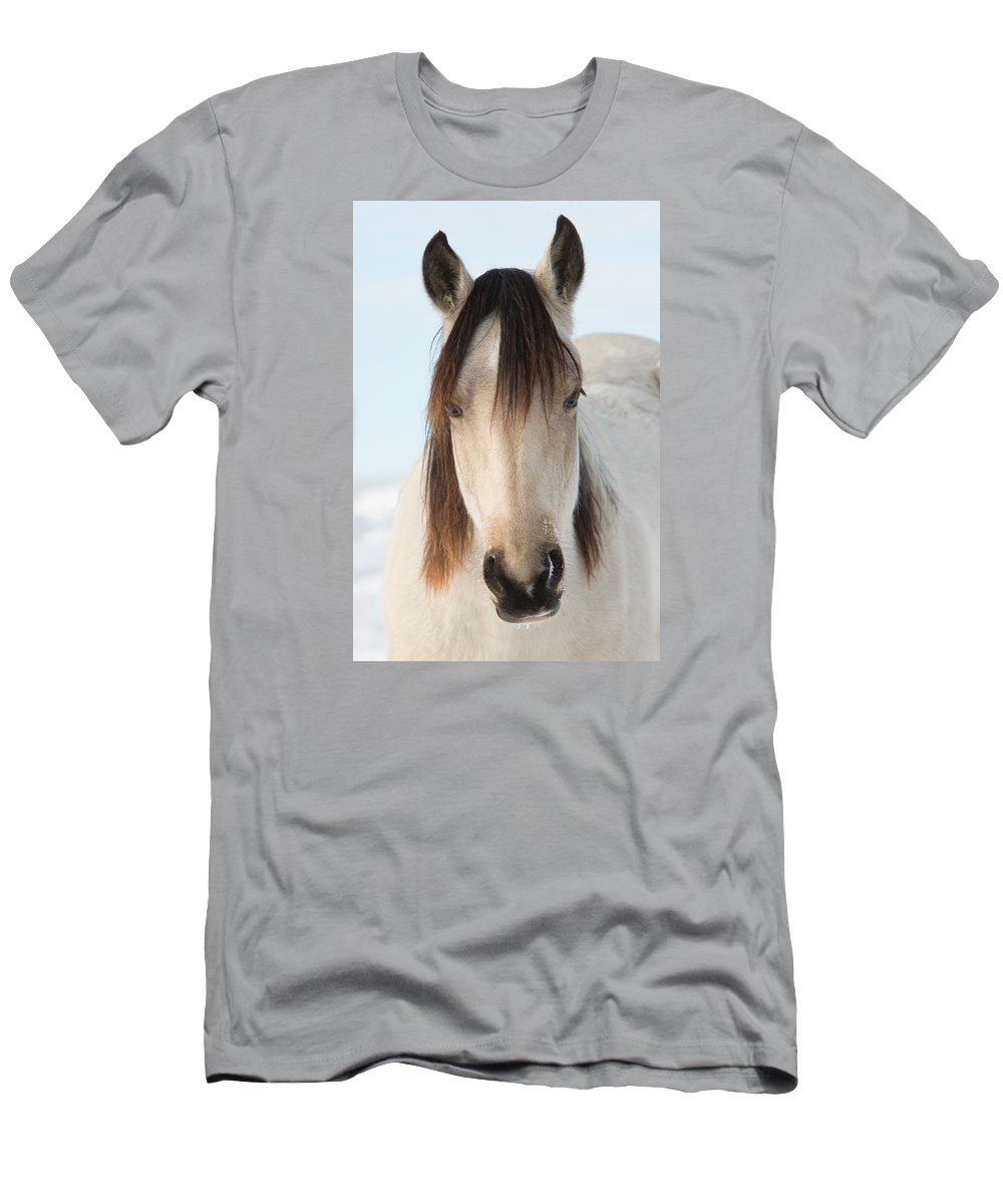 Wild Horse Men's T-Shirt (Athletic Fit) featuring the photograph Winter Beauty by Kent Keller