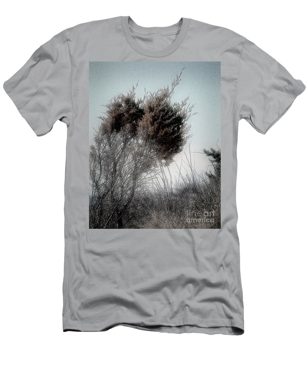 Beach Men's T-Shirt (Athletic Fit) featuring the painting Winter Cedar by RC DeWinter