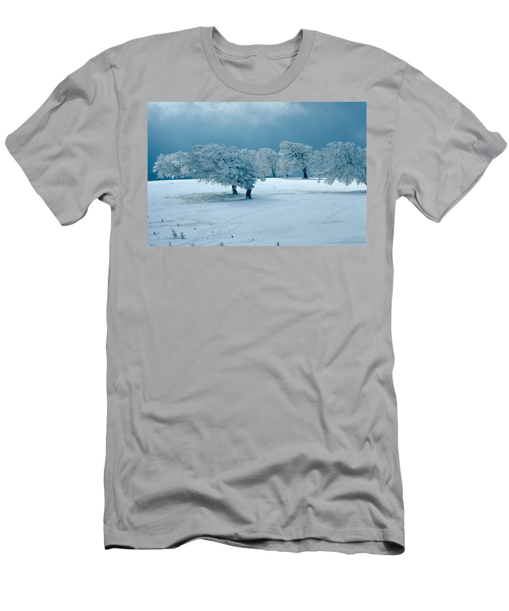 Winter Men's T-Shirt (Athletic Fit) featuring the photograph Winter Wonderland by Flavia Westerwelle