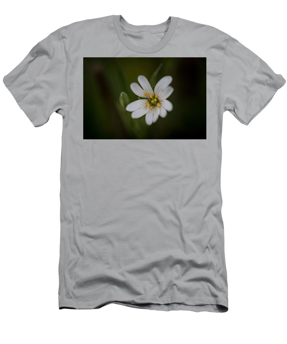 Danelion Men's T-Shirt (Athletic Fit) featuring the photograph Wood Sorrel by Ian Barstow