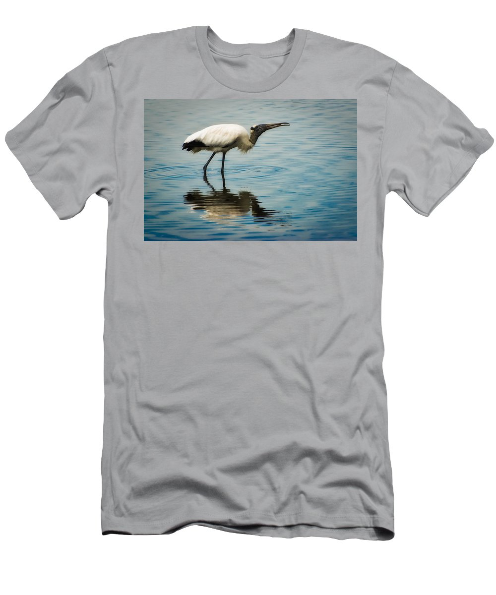 Stork T-Shirt featuring the photograph Wood Stork by Rich Leighton