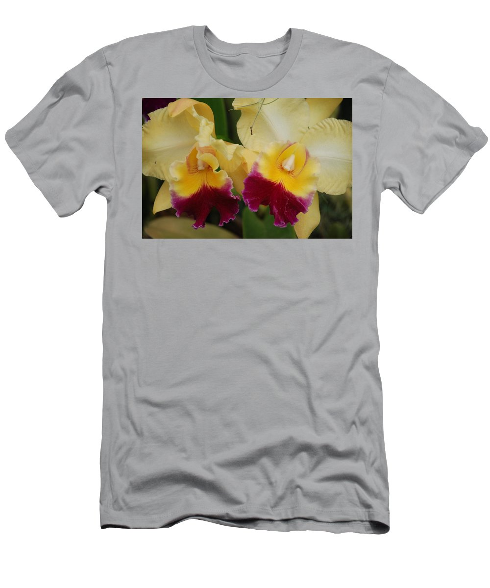 Macro Men's T-Shirt (Athletic Fit) featuring the photograph Yellow Purple Orchids by Rob Hans