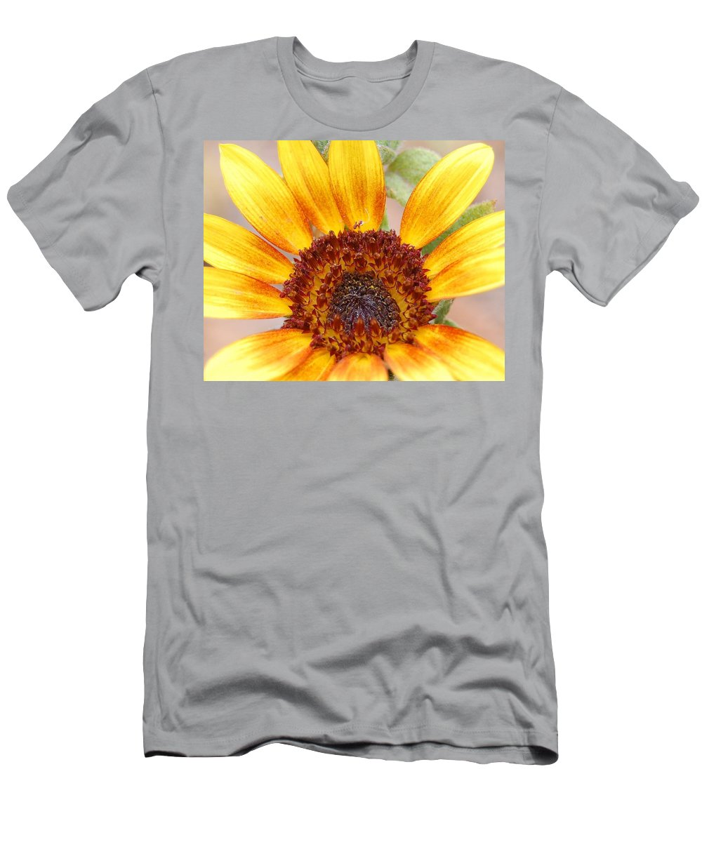 Sunflower Men's T-Shirt (Athletic Fit) featuring the photograph Yellow Sunflower by Amy Fose