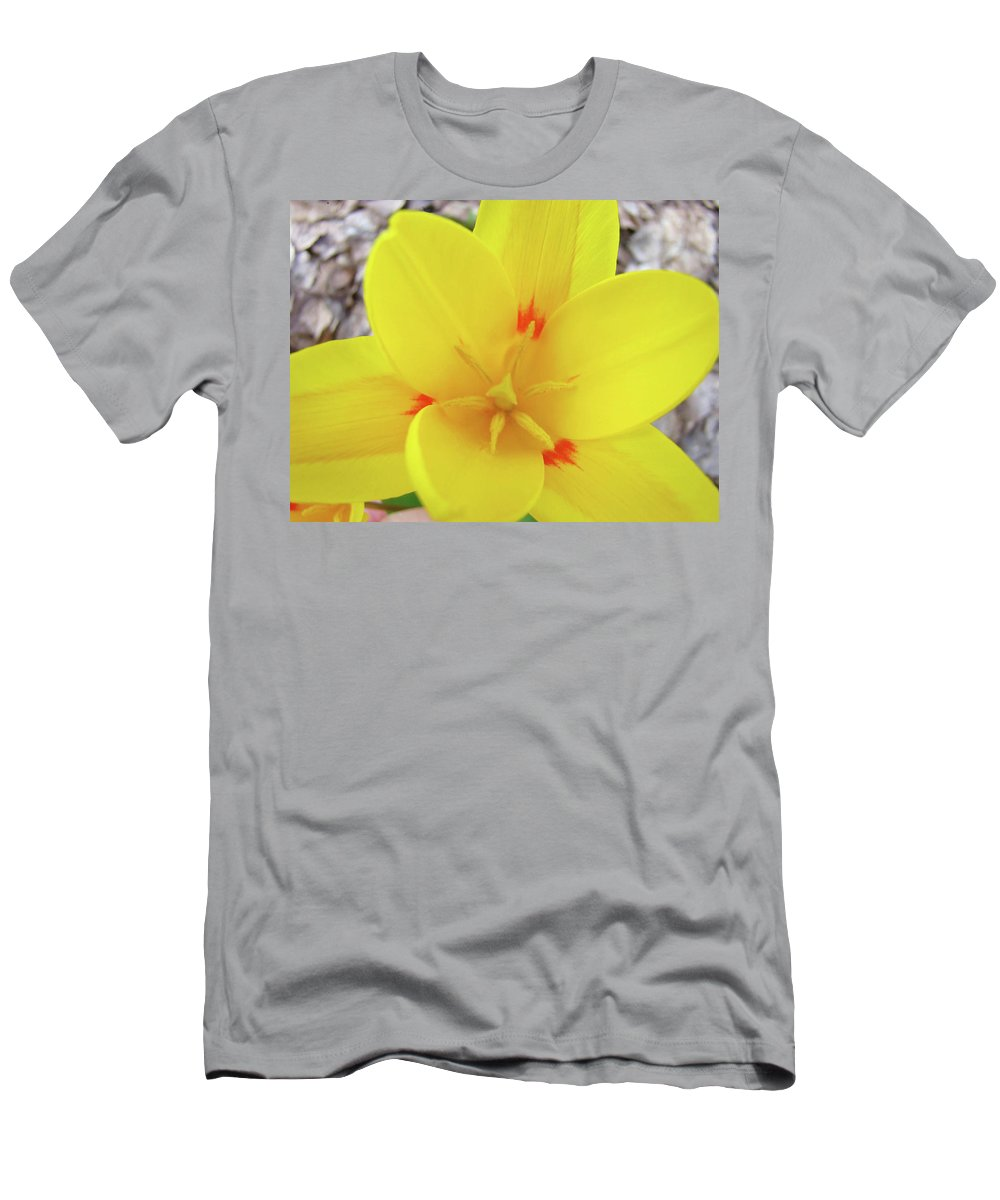 �tulips Artwork� Men's T-Shirt (Athletic Fit) featuring the photograph Yellow Tulip Flower Spring Flowers Floral Art Prints by Baslee Troutman