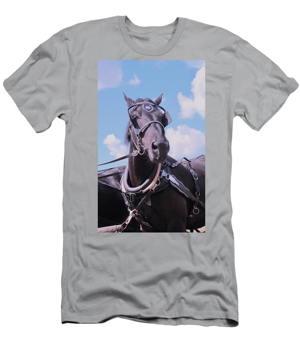 Percheron Men's T-Shirt (Athletic Fit) featuring the photograph Yes I Am The Most Beautiful by Ian MacDonald