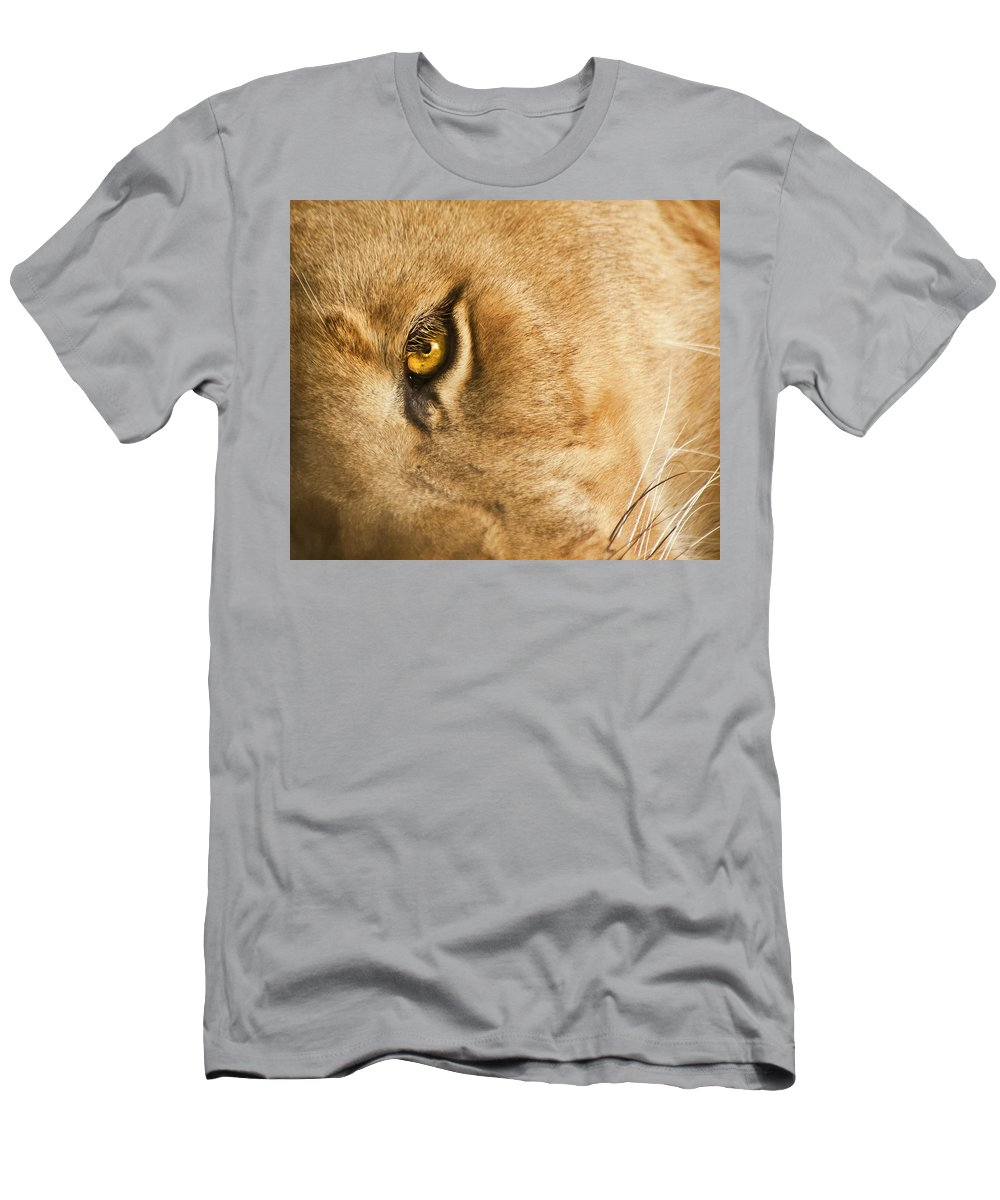 Lion Men's T-Shirt (Athletic Fit) featuring the photograph Your Lion Eye by Carolyn Marshall