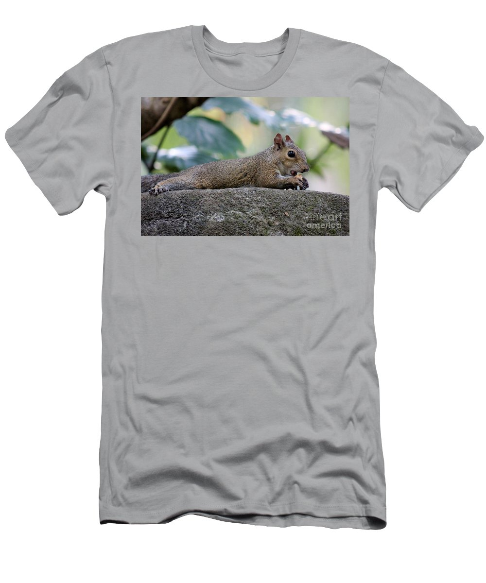 Squirrel Men's T-Shirt (Athletic Fit) featuring the photograph Yum by Mesa Teresita