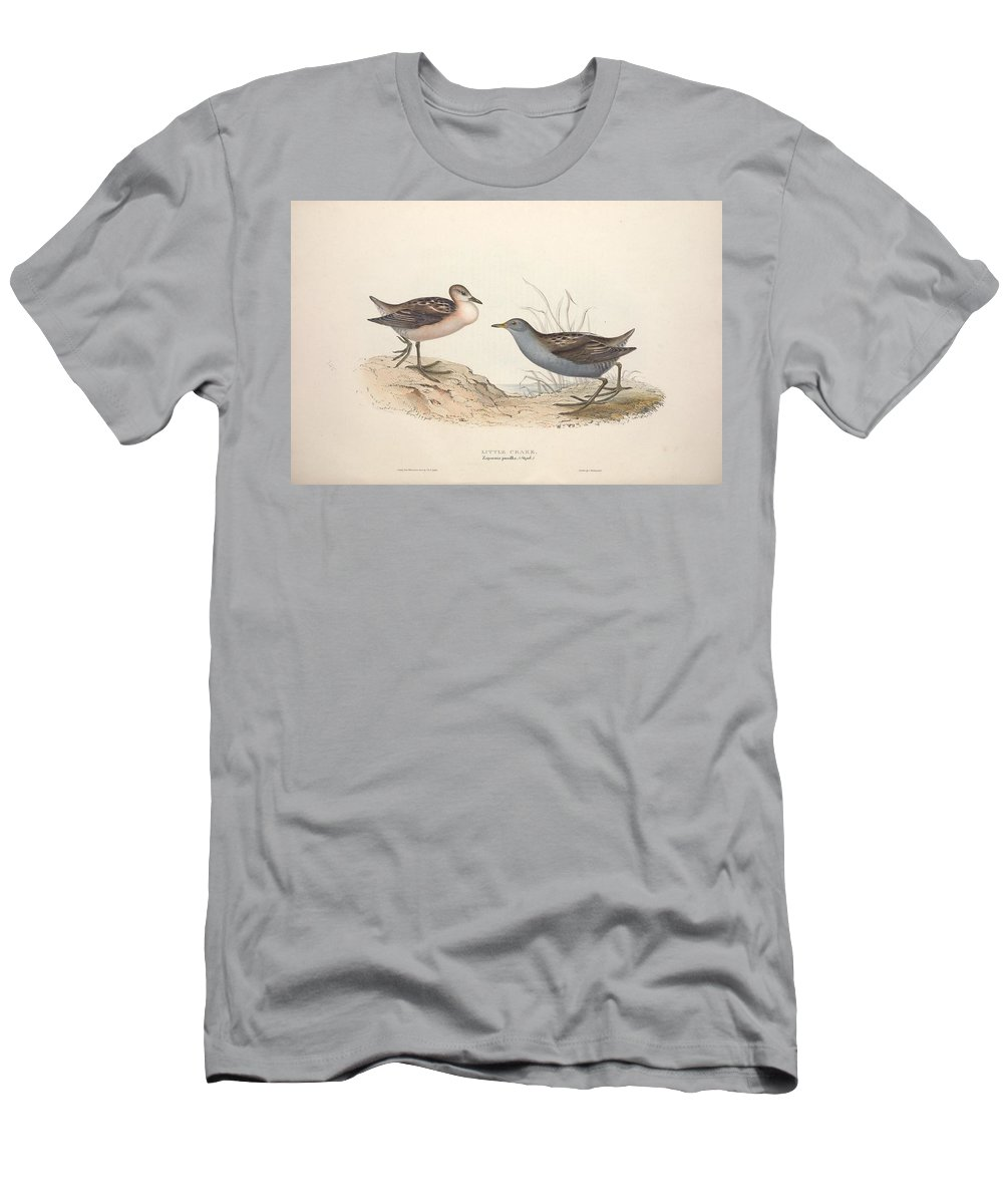 Nature Men's T-Shirt (Athletic Fit) featuring the painting Different Types Of Birds Illustrated By Charles Dessalines D Orbigny 1806-1876 21 by Charles Dessalines D Orbigny