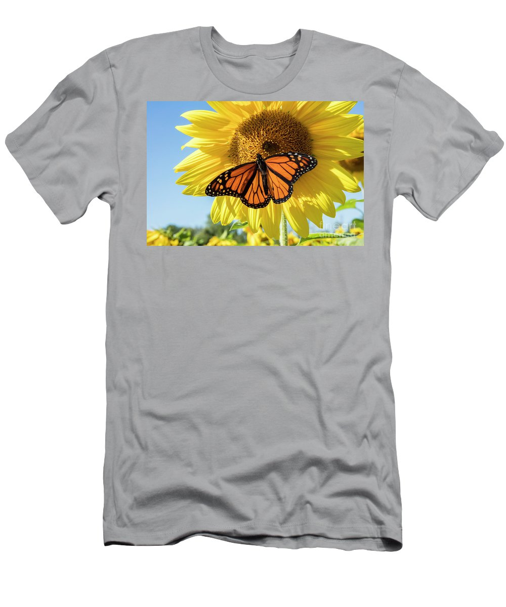 Sunflower Men's T-Shirt (Athletic Fit) featuring the photograph Beauty On The Sunflower by Jon Neidert