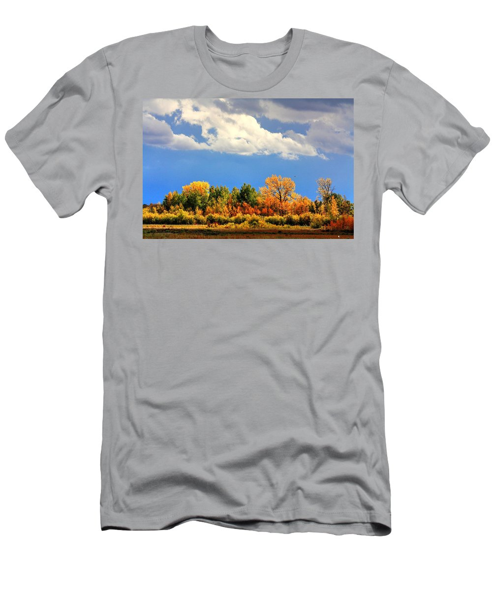 Autumn Fall Colours Colors Winter Red Yellow Red Orange Blue Harvest Evening The End Over This Before Winter Awakening Fall Colours Fall Color Summers End Men's T-Shirt (Athletic Fit) featuring the photograph Colour Time by David Matthews